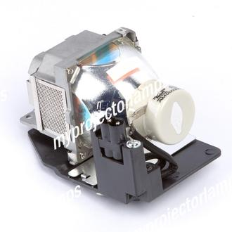 Sony VPL-EX7+ Projector Lamp with Module