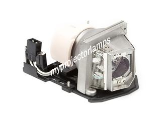 Toshiba TDP-NPS10A Projector Lamp with Module
