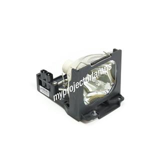 Toshiba TLPL79 Projector Lamp with Module