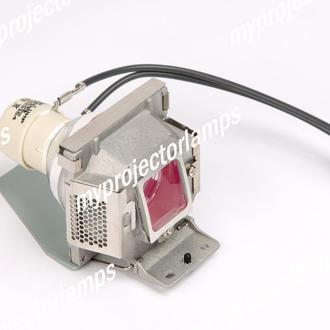 Viewsonic PJD5111 Projector Lamp with Module