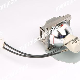 Viewsonic PJD5351 Projector Lamp with Module