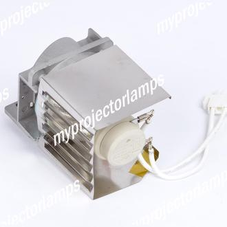 Viewsonic PJD5523W Projector Lamp with Module