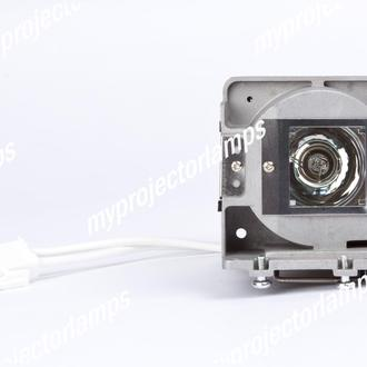 Viewsonic PJD5523-1W Projector Lamp with Module