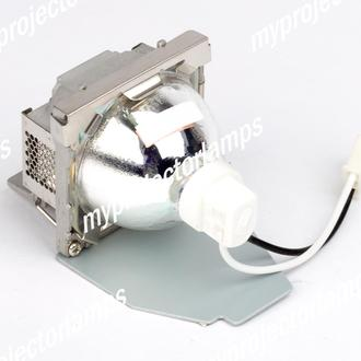Viewsonic PJD5211 Projector Lamp with Module