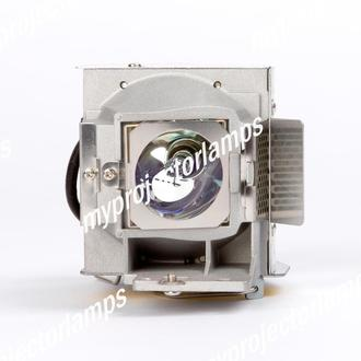 Viewsonic PJD6213 Projector Lamp with Module