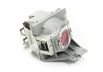 Viewsonic PJD6350 Projector Lamp with Module
