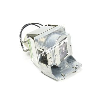 Viewsonic PJD7830HDL Projector Lamp with Module
