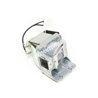Viewsonic PJD5453S-1W Projector Lamp with Module