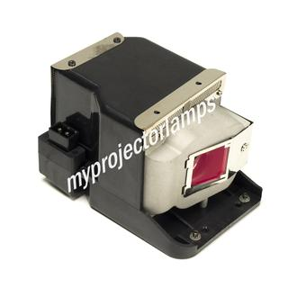 Viewsonic PJD6210-WH Projector Lamp with Module