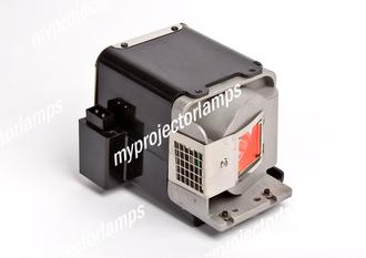 Viewsonic PJD6251 Projector Lamp with Module