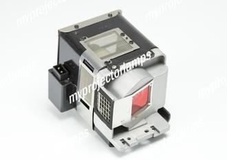 Viewsonic PRO8200 Projector Lamp with Module