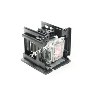 Vivitek D5010 Projector Lamp with Module