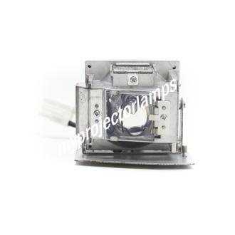 Vivitek D508 Lampe de projecteur avec module