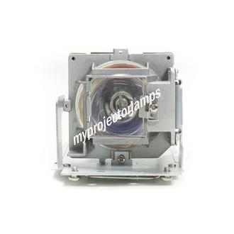 Vivitek D548 Projektorlampen mit Modul