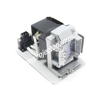 Vivitek D755WTiR Projector Lamp with Module