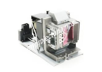 Vivitek 5811120259-SVV Projector Lamp with Module