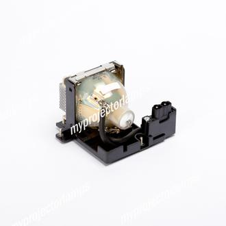 Benq PB7110 Projector Lamp with Module
