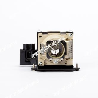 Benq PB7100 Projector Lamp with Module