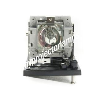 Digital Projection 116-380 Projector Lamp with Module