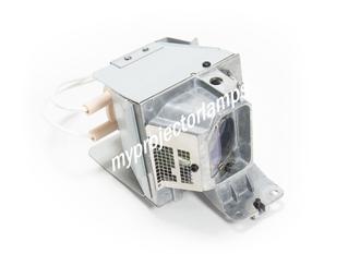 Ricoh PJ WX5460 プロジェクターランプユニット