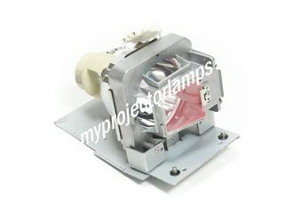 Benq HT1070 Projector Lamp with Module