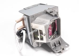 Dell 1550 Projector Lamp with Module