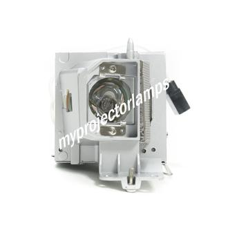 Dell 4350 Projector Lamp with Module