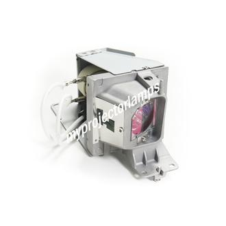 Viewsonic PA501S Projector Lamp with Module